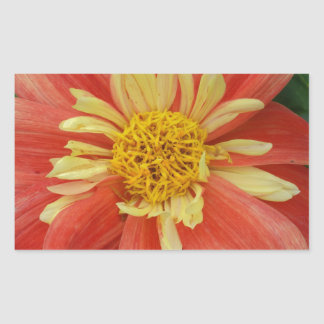 Red Flower of Love Rectangle Sticker