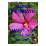 Red Flower on a BUSH close up BIRTHDAY CARD
