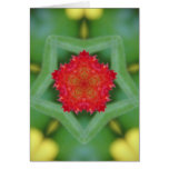 Red Flower Pentagon Stationery Note Card
