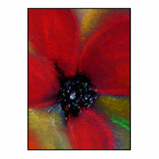 Red Flower, Poppy. Cutout