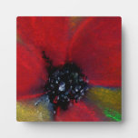 Red Flower, Poppy. Display Plaques
