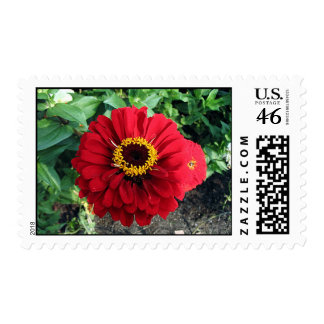 Red Flower Stamps