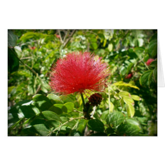 Red Flower Stationery Note Card