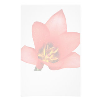 Red Flower Watermark Stationery