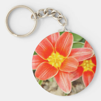 Red Flower with Yellow Center Keychain