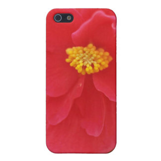 Red Flower With Yellow Stamens flowers Cases For iPhone 5