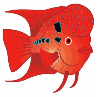 Red Flowerhorn Fish Standing Photo Sculpture