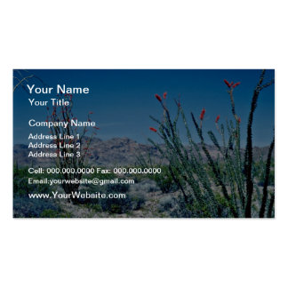 Red Flowering Ocotillo flowers Business Card Template