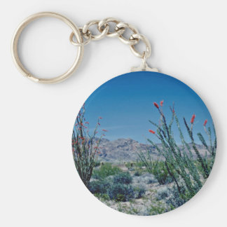 Red Flowering Ocotillo flowers Keychains