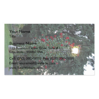 Red flowering plant in the park business cards