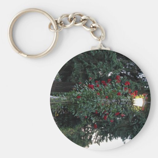 Red flowering plant in the park keychains