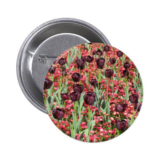 Red Flowers and dark tulips Pinback Button