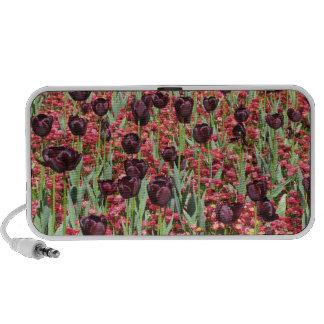 Red Flowers and dark tulips Travel Speaker