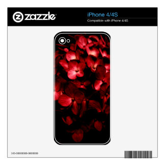 Red Flowers Bouquet in Black Background Photo iPhone 4S Decal