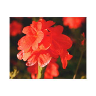 red flowers close up canvas print