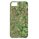 Red flowers field iPhone 5C cases