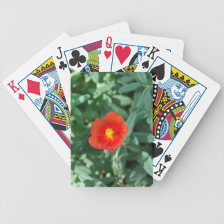 Red Flowers in Greenery - Wonderful Nature Bicycle Playing Cards