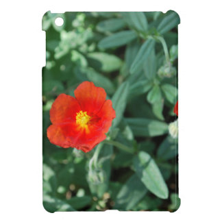 Red Flowers in Greenery - Wonderful Nature iPad Mini Case