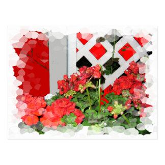 Red flowers lattice nature floral photo postcard