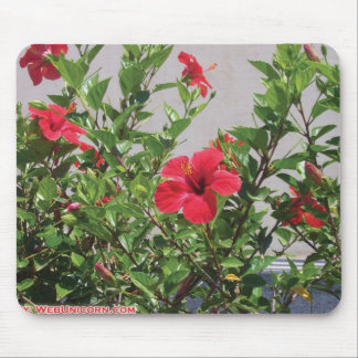 red flowers mouse pad