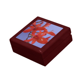 Red Flowers on Branch Gift Box