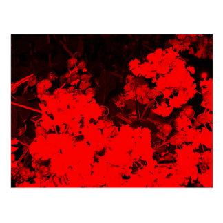 Red Flowers Pop Art Post Card