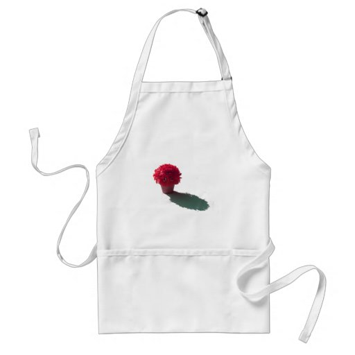 Red Flowers White Bucket and Shadow Aprons