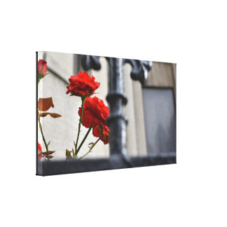 Red Flowers Wrought Iron New York City Photography Canvas Print