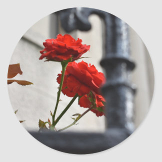 Red Flowers Wrought Iron New York City Photography Classic Round Sticker