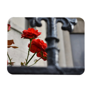 Red Flowers Wrought Iron New York City Photography Magnet