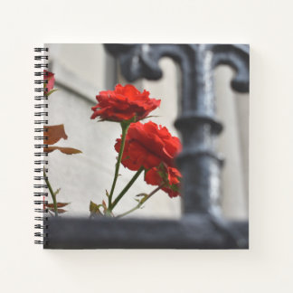 Red Flowers Wrought Iron New York City Photography Notebook