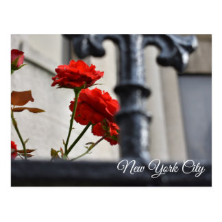 Red Flowers Wrought Iron New York City Photography Postcard