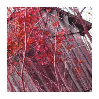 Red Foliage shack Canvas Print