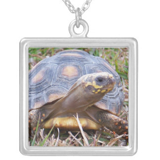 Red-Foot Tortoise Necklace