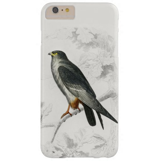 Red-footed Falcon Illustration Vintage Art Print Barely There iPhone 6 Plus Case