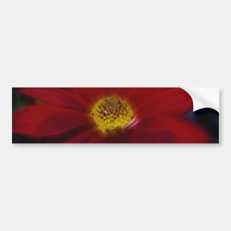 Red For Beauty Bumper Sticker