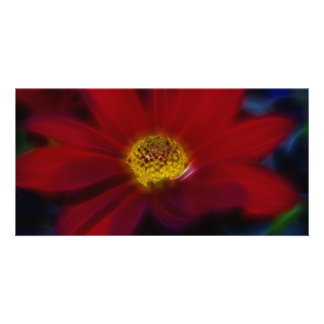 Red For Beauty Photo Greeting Card