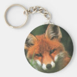 Red Fox Basic Round Button Keychain