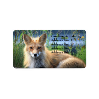 Red fox beautiful photo custom address labels