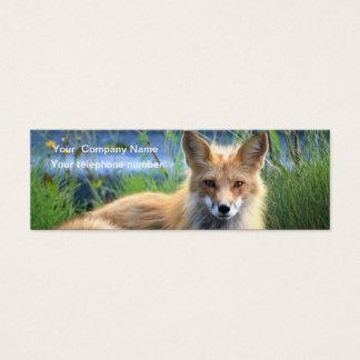Red fox beautiful photo custom business card