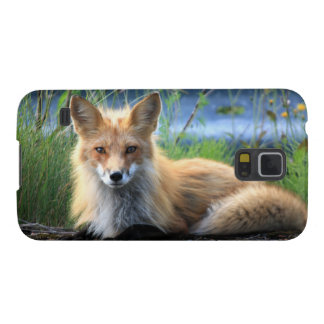 Red fox beautiful photo portrait, gift case for galaxy s5