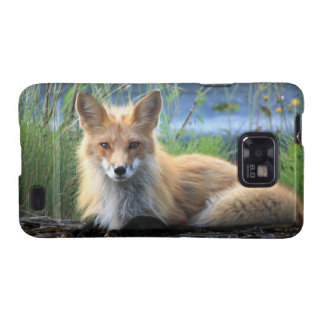 Red fox beautiful photo portrait, gift galaxy s2 cover