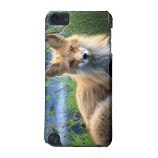 Red fox beautiful photo portrait, gift iPod touch (5th generation) covers