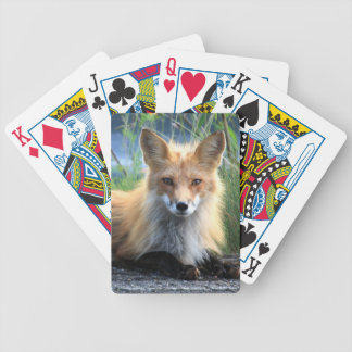 Red fox beautiful photo portrait gift bicycle playing cards