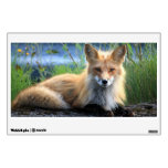 Red fox beautiful photo portrait, gift room decal