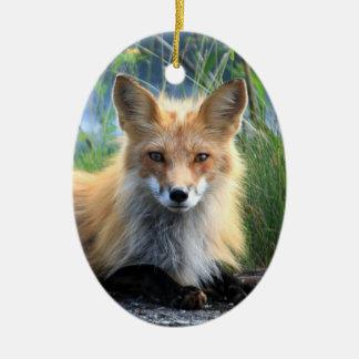 Red fox beautiful photo portrait ornament, gift