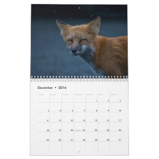 Red Fox Calendar