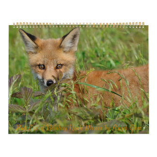 Red Fox Calendar by Angel Cher