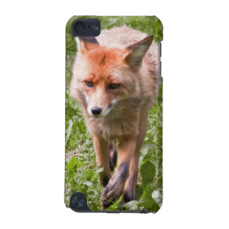 Red fox iPod touch 5G covers