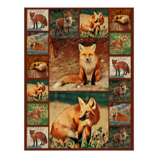 Red Fox Collage Poster